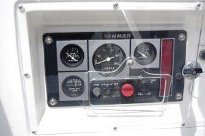 IMGP3081